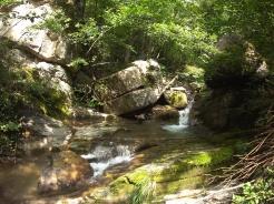 Le fresche acque della Curiasca